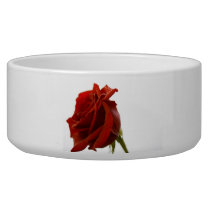 Single Red Rose With Dew Drops Bowl