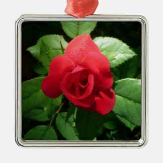 Single Red Rose with Morning Dew Drops Metal Ornament