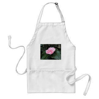 Single red streaked white flower Camellia japonica Adult Apron