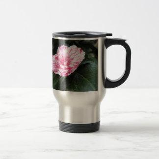 Single red streaked white flower Camellia japonica Travel Mug