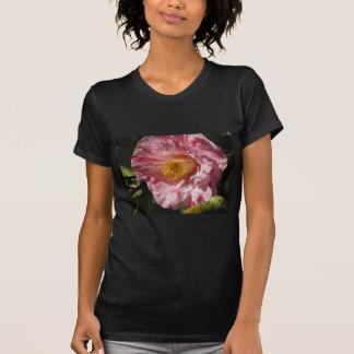 Single red streaked white flower of Camellia T-Shirt