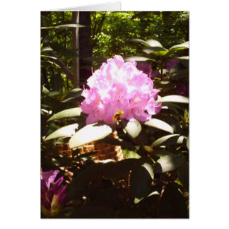 single Rhododendron bloom Stationery Note Card