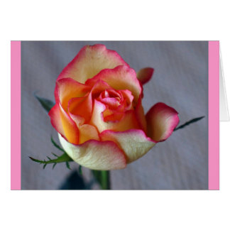 """Single Rose"" (Blank) Card"