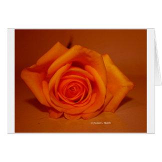 Single Rose Colorized Orange Greeting Cards