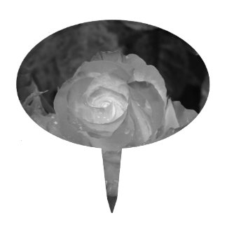 Single rose flower with water droplets in spring cake topper