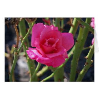 Single Rose Stationery Note Card