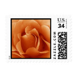 Single Rose Wedding or Any Occasion Stamps