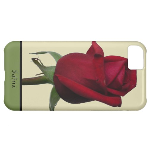 Single Rose With Cream And Olive Green iPhone 5C Case