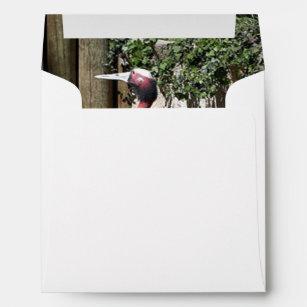 Zoo Printed Mailing Envelopes Zazzle