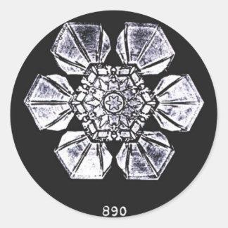 Single Snowflake Photography Classic Round Sticker