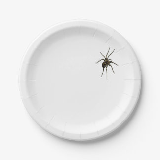 Single spider paper plate. paper plate