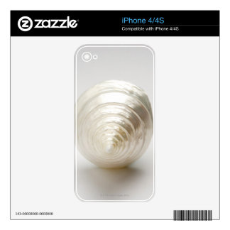 Single spiral seashell decal for the iPhone 4