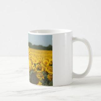 Single Sunflower in a Field of Sunflowers Coffee Mug