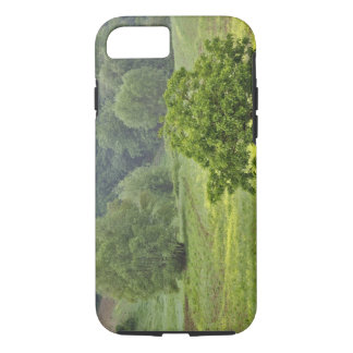 Single tree in agricultural farm field, Tuscany, 2 iPhone 7 Case