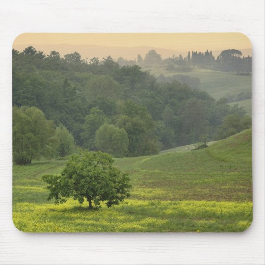 Single tree in agricultural farm field, Tuscany, Mouse Pad