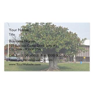 Single tree in garden business card template