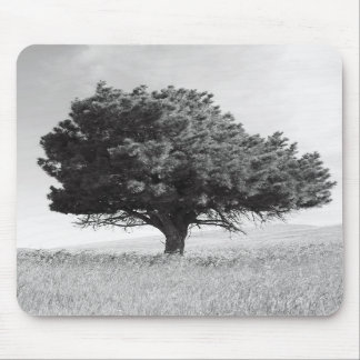 Single Tree Mousepad