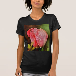 Single Tulip photographed by Tutti T-shirt