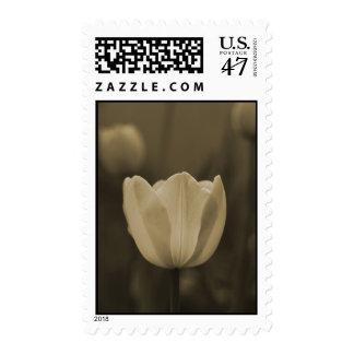 Single Tulip sepia tone wedding postage stamps