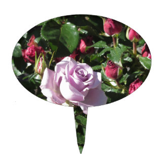 Single violet rose flower with red roses around cake topper