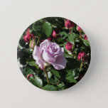 Single violet rose flower with red roses around pinback button