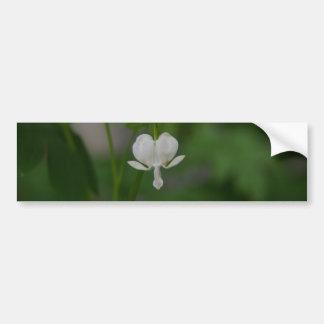 Single White Bleeding Heart Bumper Sticker