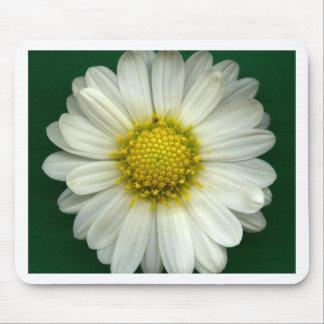 Single White Chrysanthemum Mouse Pad
