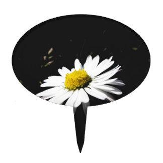 Single white daisy flower on dark background cake topper