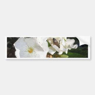 Single White Oleander with Bee 1 Bumper Sticker