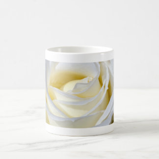 Single white rose blossoms coffee mug