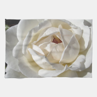Single white rose flower in spring hand towel