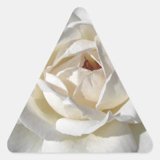 Single white rose flower in spring triangle sticker