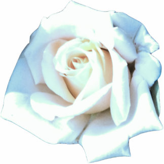 Single White Rose Cut Outs