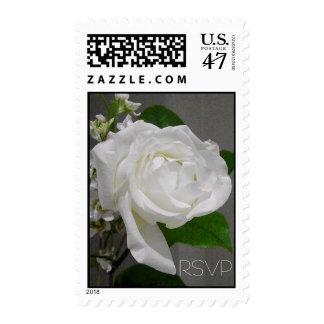 Single White Rose RSVP Wedding Postage