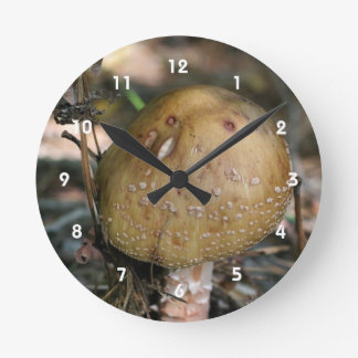 Single Wild Brown Mushroom Nature Round Clock