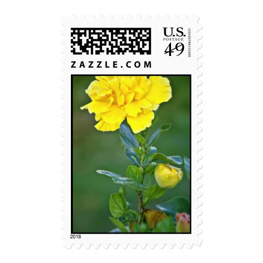Single Yellow Bloom flowers Stamps