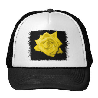 Single Yellow colored rose bloom Hats