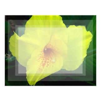 single yellow flower w orange and green letterhead