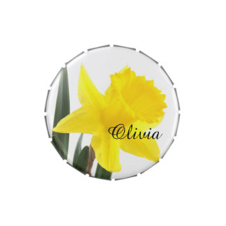 Single Yellow Narcissus Daffodil Candy Tin