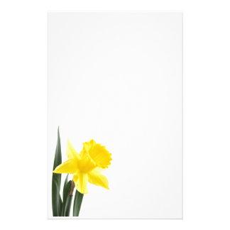 Single Yellow Narcissus Daffodil Stationery
