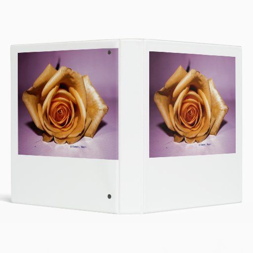 Single yellow rose contrasted against lilac back 3 ring binders
