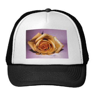Single yellow rose contrasted against lilac back trucker hats