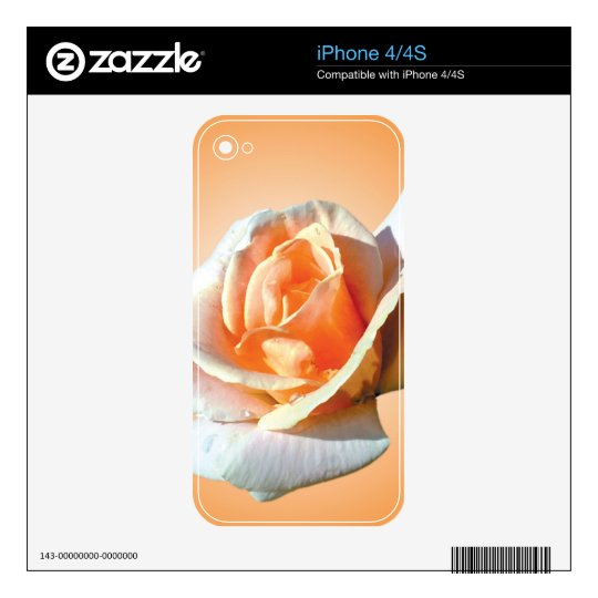 single yellow rose flower in yellow background. iPhone 4 decals