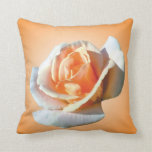 single yellow rose flower in yellow background. throw pillow