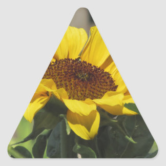 Single yellow sunflower with green leaves triangle sticker