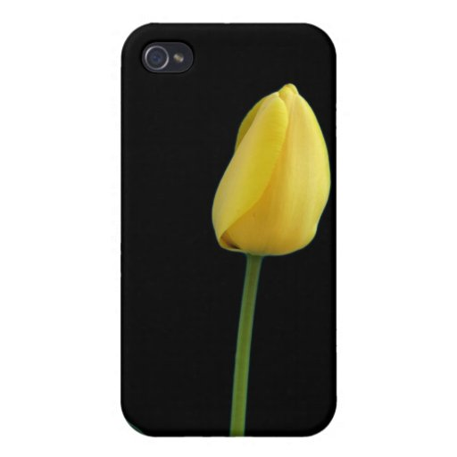 single yellow tulip flower cover for iPhone 4