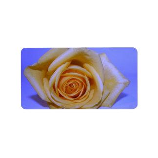Single yellowish rose blue tinted address label