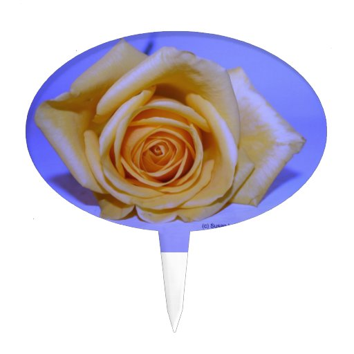 Single yellowish rose blue tinted cake toppers