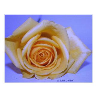 Single yellowish rose blue tinted flyer design