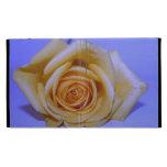 Single yellowish rose blue tinted iPad folio cover